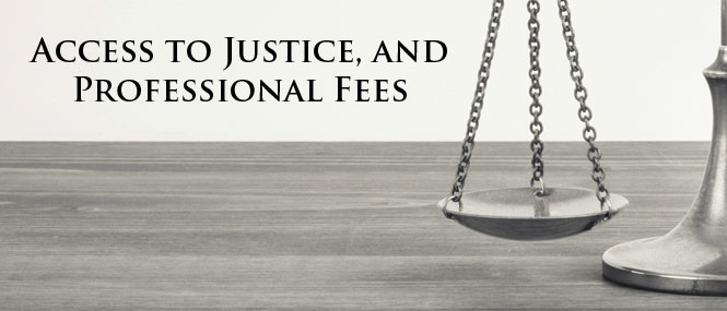 Our Professional Fees