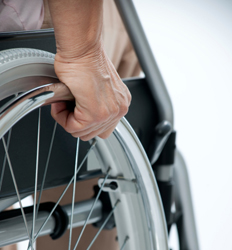 Disability Legal Support